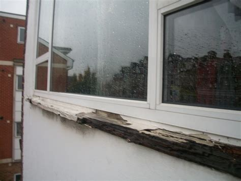 window sill windows replacement outside mybuilder