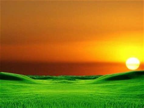 orange  green wallpaper