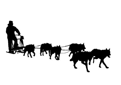Dog Sled | Silhouette | Pinterest | Sled, Dogs and Dog ...