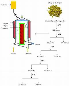 Schematic Diagram Of Wiped Film Molecular Evaporator And