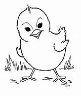 Coloring Farm Animal Pages Printable sketch template