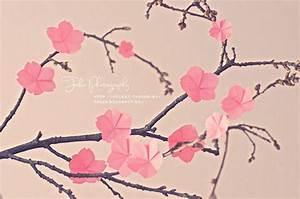 Blüten Aus Papier : papierblumen basteln aus krepppapier seidenpapier ~ Eleganceandgraceweddings.com Haus und Dekorationen