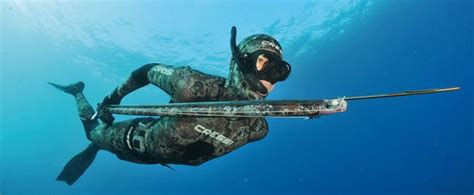spearfishing queensland fishing