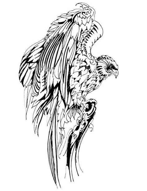 Pin by Kity Katt on coloring | Animal totem spirit guides