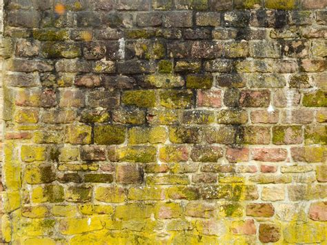 images rock texture stone wall yellow brick