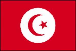 Cout De La Vie Aux Canaries : vacances et voyage tunisie les conseils du professionnel ~ Medecine-chirurgie-esthetiques.com Avis de Voitures
