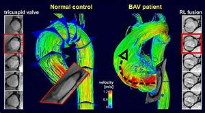 Pediatric Medical Imaging Research