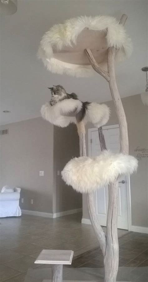 indoor cat tree ideas  play  relax home design