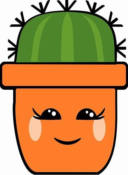 Kawaii Cactus Pot Je