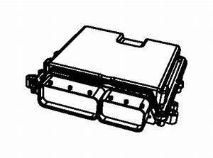 Jeep Wrangler Module  Powertrain Control  Generic  New