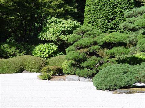 Decorative Gravel Landscaping - decorative landscape gravel landscaping network