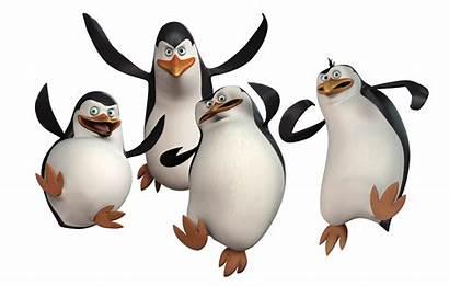 Madagascar Penguins Zone Za Film Animated Tickets