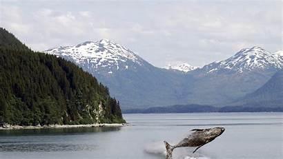 Alaska Hd8
