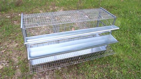 gabbia per galline costruire un pollaio per galline ovaiole