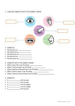 english esl  senses worksheets  downloaded