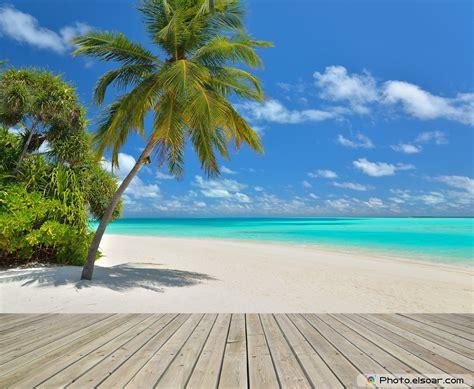 Tropical Beach Scenes Wallpaper Wallpapersafari