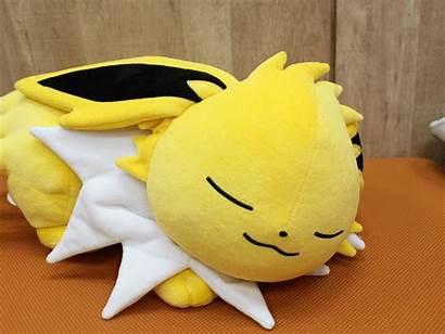 Eevee Sleeping Pokemon Plush Jolteon Sleep Evolutions