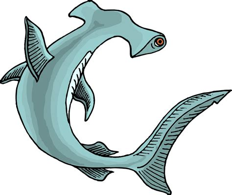 cartoon shark page  clipart  clipart