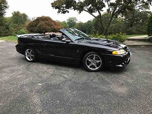 1996 Ford Mustang Cobra for Sale | ClassicCars.com | CC-1020585