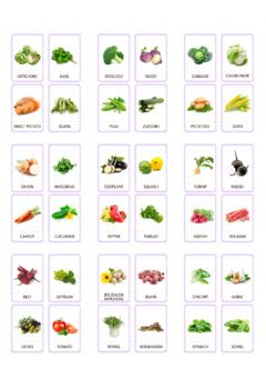 vegetables flash cards printable cards flashcards