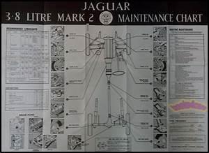 Jaguar Mk2 3 8 Mark 2 Maintenance Diagram Mk Ii Wall Chart