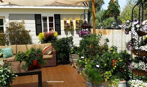 Grow A Container Vegetable Garden On Your Patio