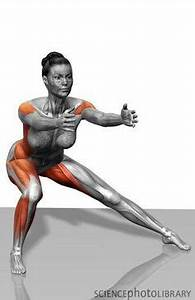1000+ images about Outer Thighs on Pinterest | Outer ...