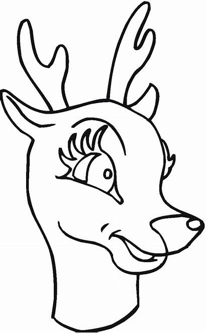Deer Coloring Pages Animals Wildlife Clipartpanda