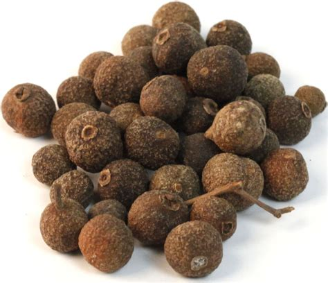what is allspice fun facts on allspice american spice blog