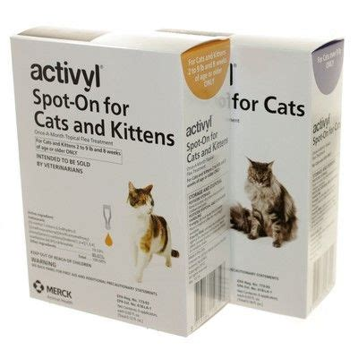 flea and tick medicine for cats activyl for cats topical flea treatment vetrxdirect