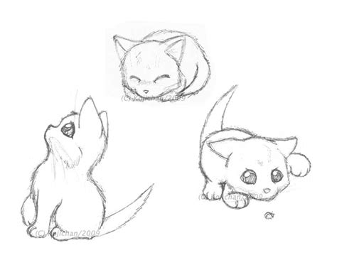gallery  easy kitten drawings simple cute cat