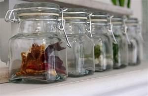 Vorratsgläser Mit Bügelverschluss : 12 vorratsgl ser eckig glas bad gastgeschenke vorratsglas aufbewahrungsglas ebay ~ Markanthonyermac.com Haus und Dekorationen