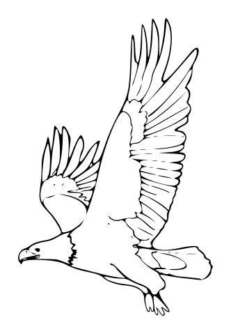 fileeagle clipartsvg wikimedia commons