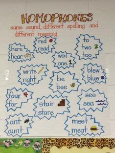 homophones images teaching teaching reading