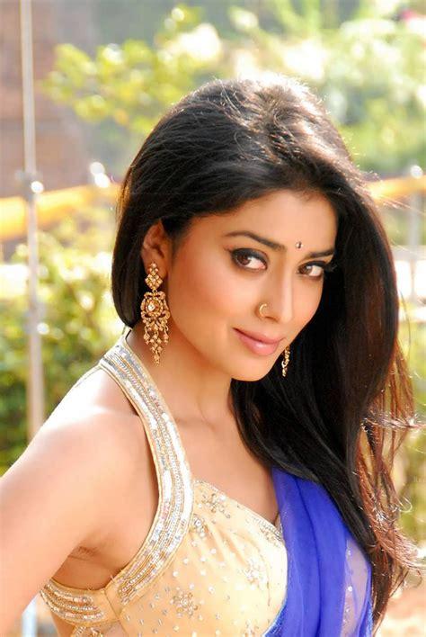 Shriya Saran Blue Saree Spicy Photos Latest Photo Gallery Actress Spicy Photos Celebrity