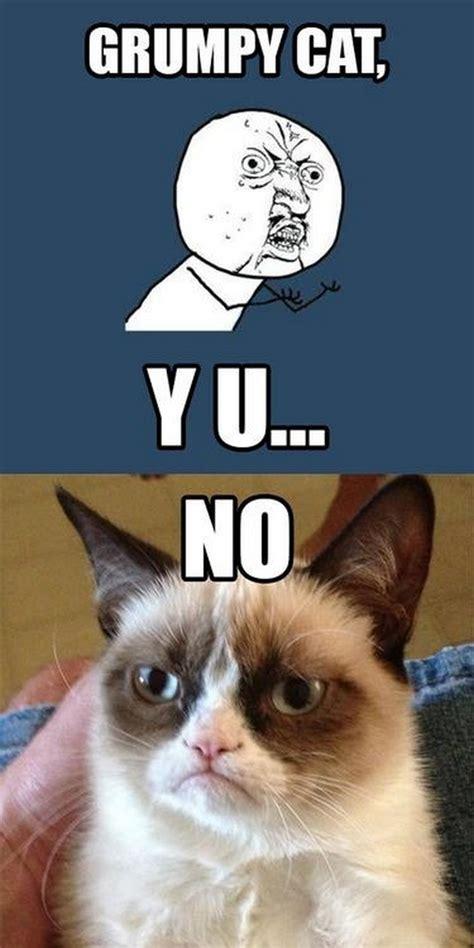 No Meme Grumpy Cat - y u no meme 03