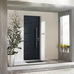 Porte D Entrée D Appartement : porte d 39 entr e alucier portes en aluminium acier monsieur store ~ Melissatoandfro.com Idées de Décoration