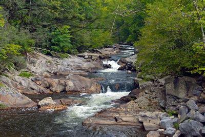 freshwater biomes
