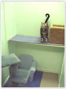 Carpeted Cat Scratching Post by Cozy Cat Rooms Kitty Cat Condos