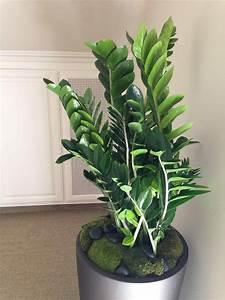 Indoor Plant Displays Flower Pots ~ Garden Trends