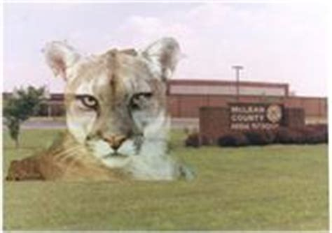list mclean county public schools