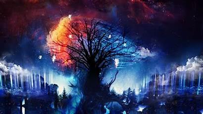 Fantasy Digital Fairies Stars Trees Artwork Desktop