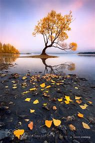 New Zealand Nature Landscapes Photography