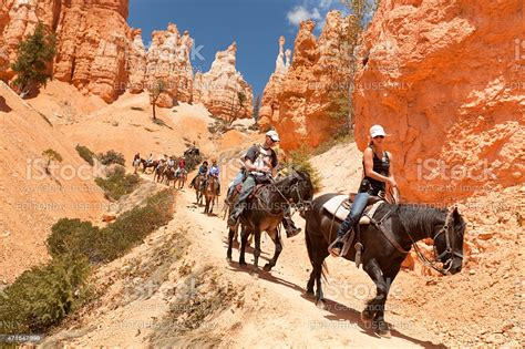 bryce canyon horse national park trail visitors istock