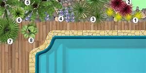 Plantes Vivaces Autour D Un Bassin : faire un jardin autour d une piscine planter les abords d une piscine enterr e ~ Melissatoandfro.com Idées de Décoration