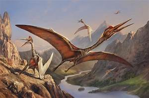 Quetzalcoatlus - Facts and Pictures  Quetzalcoatlus
