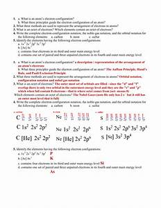 Section 3 Worksheet    Review