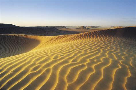 types  desert soil sciencing