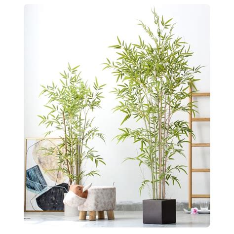 [พร้อมส่ง+ฟรีจัดส่ง] ต้นไม้ปลอม เสมือนจริง ต้นไผ่ | Shopee ...