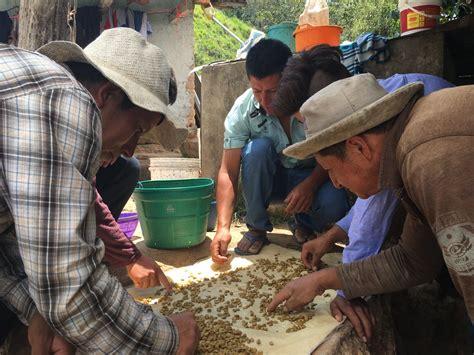 San antonio, tx 78209 p. Huabal 2020 - Merit Coffee